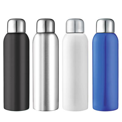 guzzle-stainless-sports-bottle
