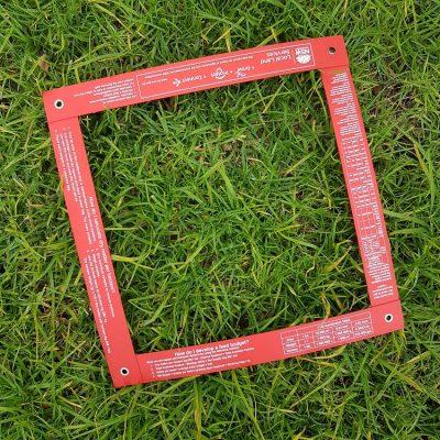custom-pasture-quadrat